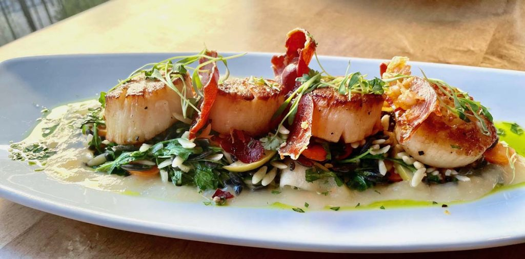 Plated entree of pan seared scallops garnished with bacon.